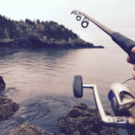 How to Choose a Fishing Rod for Beginners