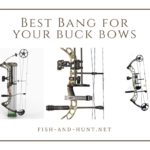 3 Best Bang For Your Buck Compound Bows of 2018