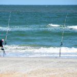 Going Saltwater Surf Fishing? Here is What You Need