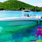 Locating Reasonable Prices on Great Marine & Boat Products doesn't have to be Frustrating