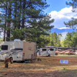 Pros and Cons of the Small RV Lifestyle