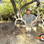 Tips for Hunting White Tail Deer